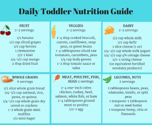 Daily Toddler Nutrition Guide